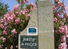 DOMAINE DE FOUCAUD - Carcassonne