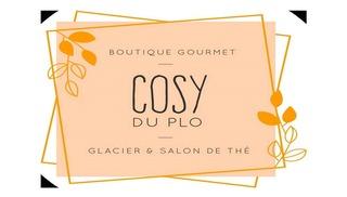 LE COSY DU PLO - Carcassonne