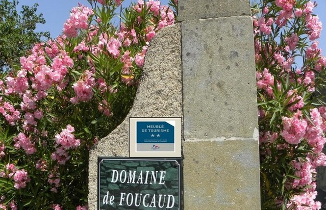 DOMAINE DE FOUCAUD 1 - Carcassonne
