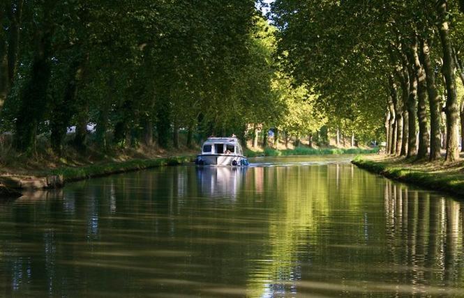 CANAL DU MIDI 1 - Carcassonne